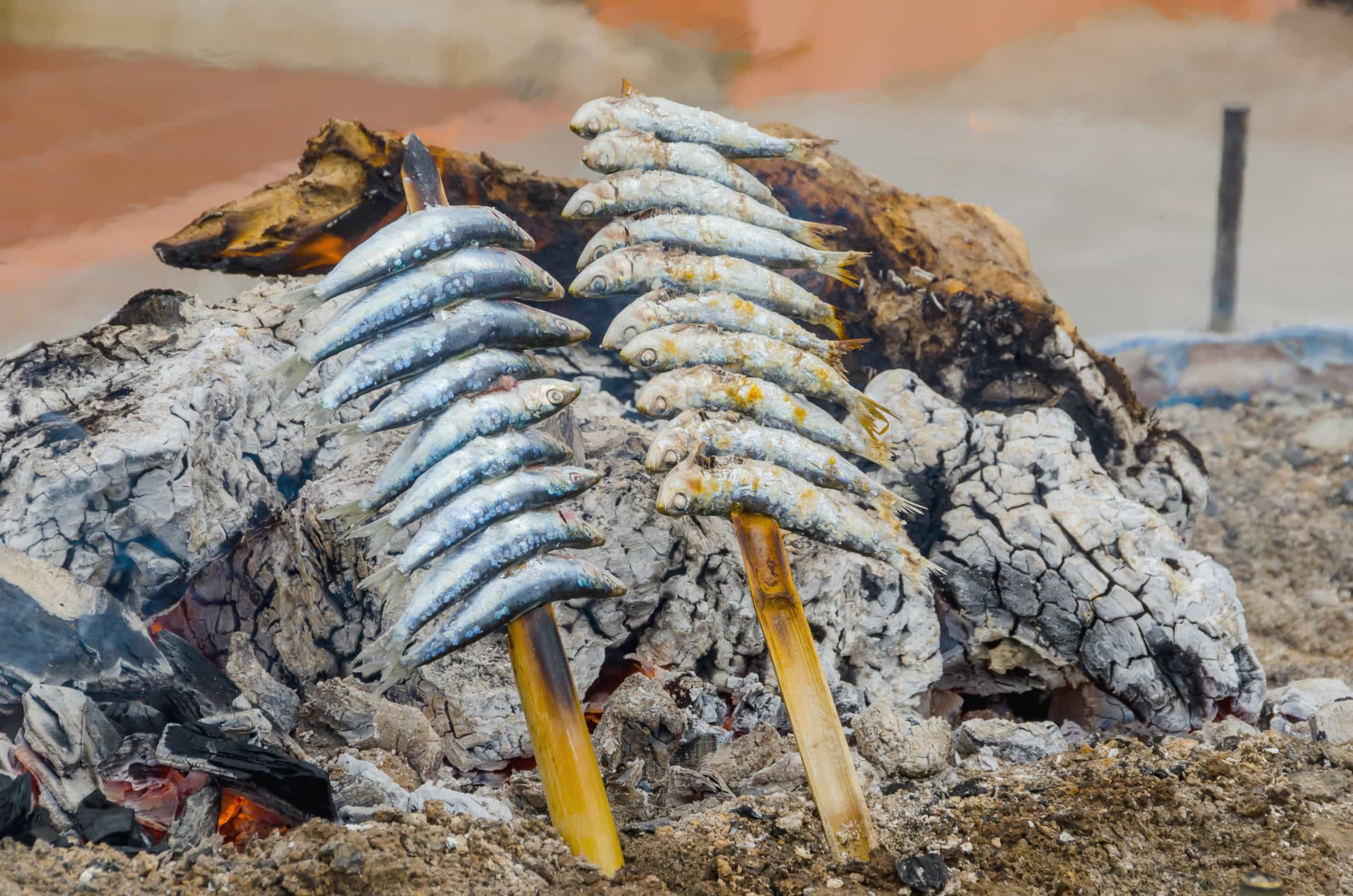 Skewered sardines cooked in the beach. Espetos
