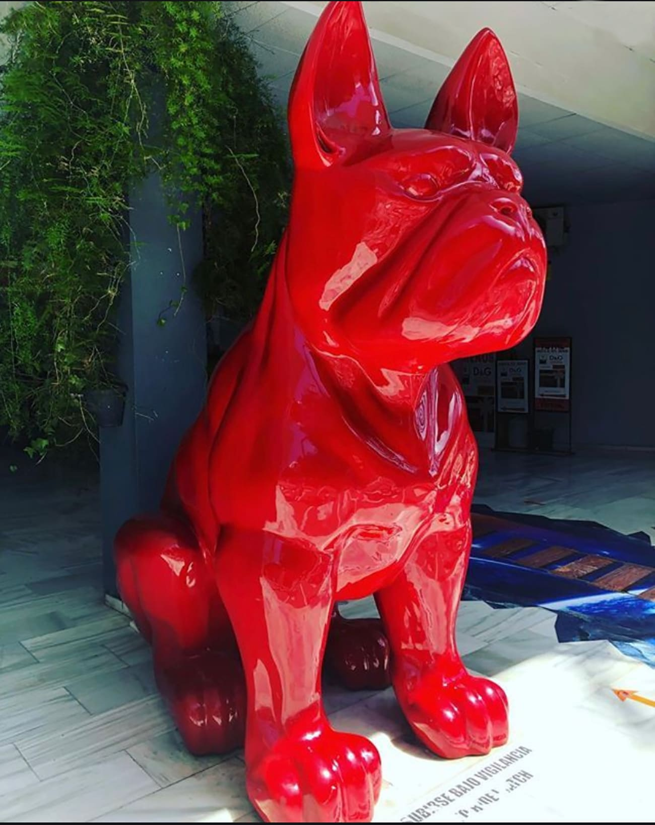 Red Dog - Puerto Banus