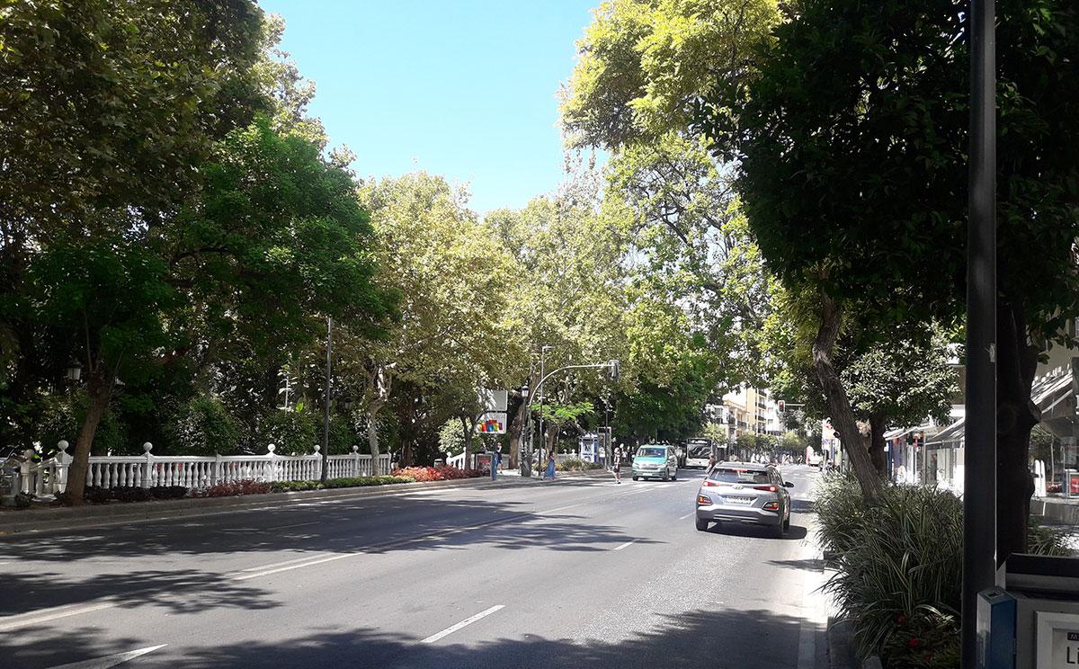 Avenida Ramon y Cajal, named after Santiago Ramon y Cajal