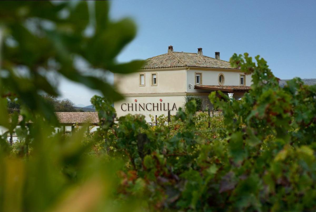 Chinchilla bodega