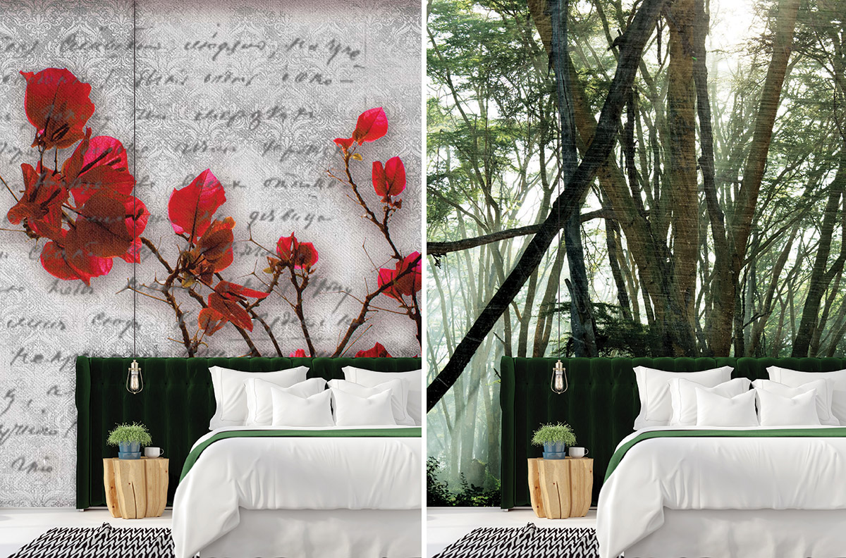 Poetry and bougainvillea