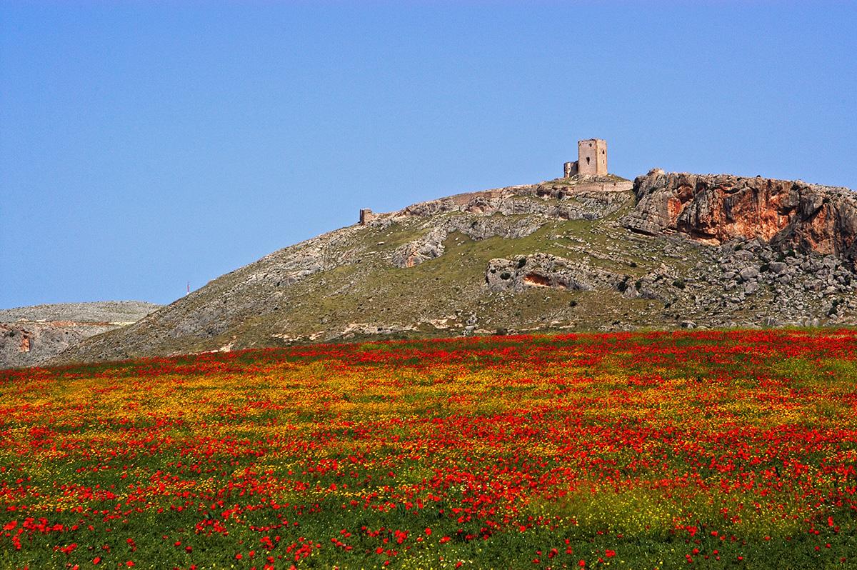 The Castillo de Estrella on the hilltop above Teba