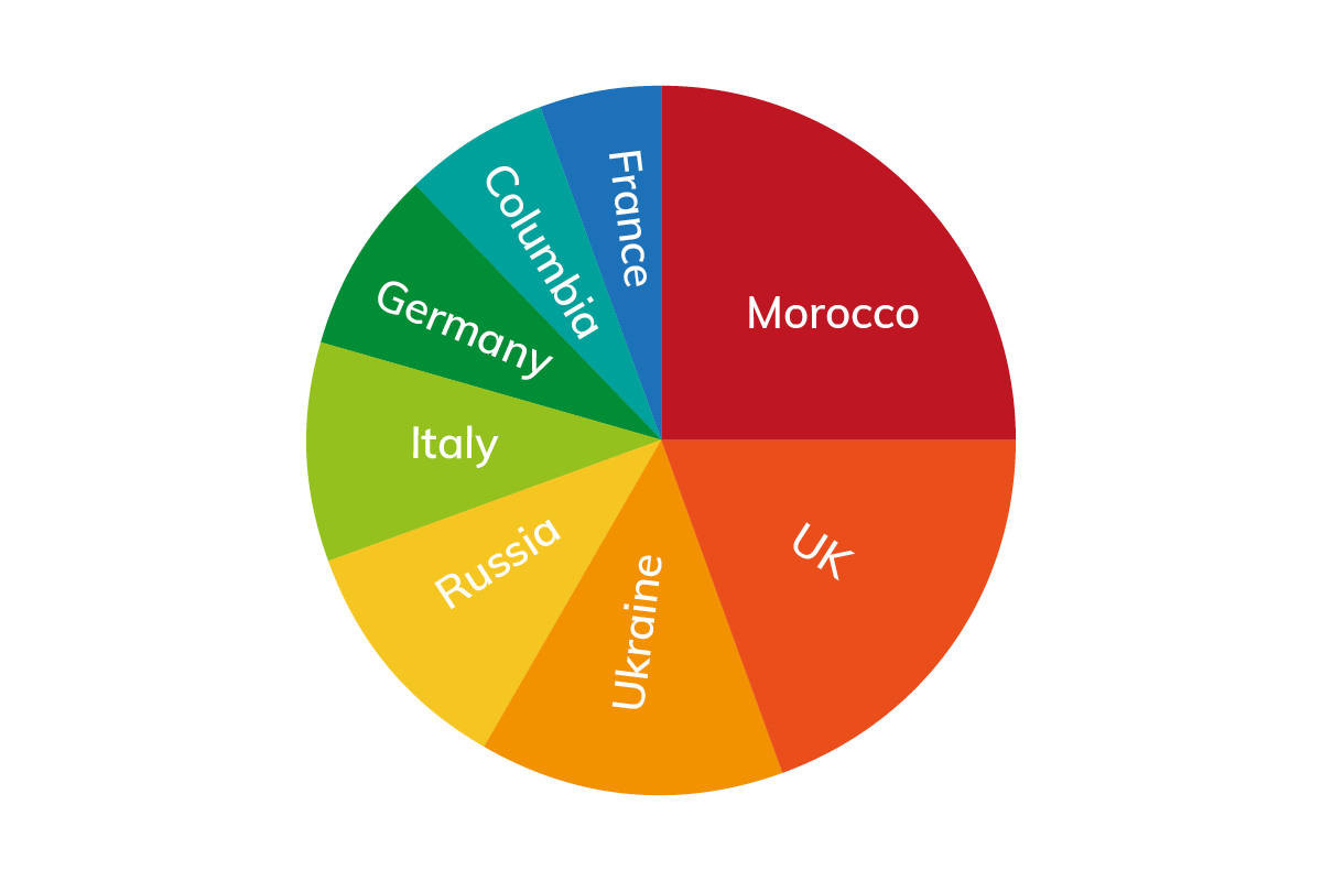 Pie chart of Marbella residents
